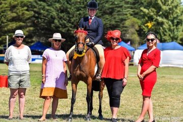 Supreme open ridden exhibit, the successful young horse, Whitmere Airs and Graces ridden by Nicole Butcher