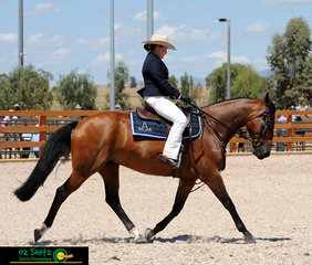 Displaying a beautifully ridden extended trot Madeline Brown on board Waymere Oaks Latitude impressed the judges in the Hack Phase of the National Maturity at the 2019 ASH National Show.
