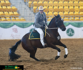 Looking sharp and accurate, Maryanne Gough on Wungum Radar rode a beautiful workout in the Maturity at the 2019 ASH National Show.