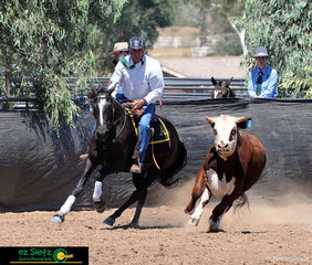 First out in the Campdraft Phase of the National Maturity was John Lee on board Jats Bar Abigail setting the standard for the rest of the class.