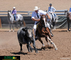 Navigating the beast around the pegs, Allan Wallen rode Dandilla Colann in the Campdrafting Phase of the 2019 ASH National Maturity.