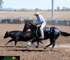 Keeping close to the beast in the Campdrafting Phase of the National Maturity Challenge, was Nicholas Horn and Eljay Dynamic Destiny.