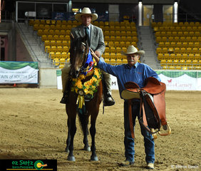 Winner of the Triple Crown for the 2019 ASH National Maturity was consistent mare, Annie's Gift owned by Mel and Brett Welsh, ridden by Matt Holtz.