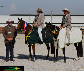Judge Stuart Robinson presented Champion of the Senior Novice Working class to Robert Prichard riding 'Tocal Notes And Lyrics' and Reserve Champion to John Lee riding 'Jats Bar Unique' at the 2019 ASH National Show.
