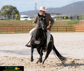 Evidently working as a team - Jay Charnock and Riverglen Diamond Acre complete an impressive roll back in the Champion and Reserve Champion Junior Novice Working class, held on day six of the 2019 ASH National Show.