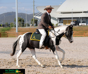 Three year old colt, Coleslea Phantom and rider Darcy Neal, produced an impressive test in their Junior Novice Working class 'Colt 3 years old' to come out with the win.