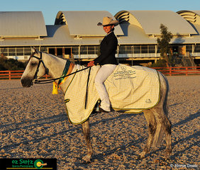 Winning the Reserve Champion Senior Pleasure Hack title was Brewers Binnawee Conductor ridden by Amy Bronsor at the 2019 Australian Stock Horse National Show.