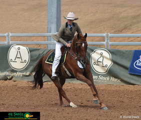 One of the first combinations to compete in the Senior Station Horse class was Carlie Fangmeier and Glen Lee Rivoli Imprint at the 2019 Australian Stock Horse National Show.