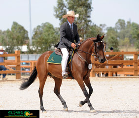 Completing a very impressive Utility pattern in the Snaffle Bit Futurity Challenge is Warwick Lawrence and two year old Shadowpark Xclusive; Warwick's first ride out of four in this Challenge.