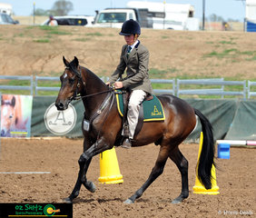 Impressing the judges was Luke Cheney and Braeview Libertine in the Station Horse 2 years and under at the Australian Stock Horse Nationals being held in Tamworth.