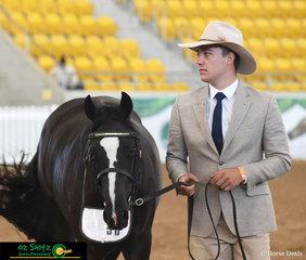 Binnia Impressive Octavia and Will Peterson look very calm going into the Led 2 Year Old Filly class at the 2019 Australian Stock Horse National Show.