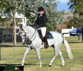 Warming up for the English Attire Hack Stallion 5 Years and Over was Ervines Rollex ridden by Melanie Marshall.