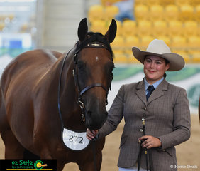 Awaiting the placings from Judge, Heath Andrews, in the Gelding 4 Year Old Led Class is Madeline Brown and Waymere Oaks Latitude