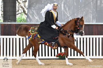 Ty Zoontjens rode Revlis Park Arabians, Haraani Fames Standing Ovation to take out the Arabian/Arabian Derivative/API Costume Championship.