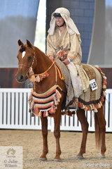Helen Spencer's, Avondale Celeste looked good during the judging of the Arabian/Arabian Derivative/API Costume Championship.