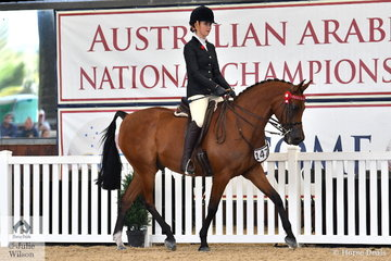 Meaghan and Charlotte Wright's, Rapid Fire  was declared Reserve Champion Purebred Ridden Arabian Championship NPTR.