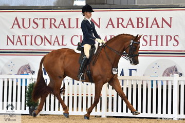 Jazi French rode her Florinzz to take out the Arabian Derivative Ridden NPTR and the Arabian Derivative/API Bridle Park Hack Championships.