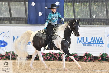 South Serenity Arabians', Zintahn Fantasy On Ice made Top Five in the competitive class for Western Pleasure.