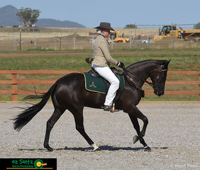 The combination made up of of Hillviewlodge Opulent ridden by Madison Bryans performed together in the Novice Hack 2 Year Old Filly and took the win of the class.
