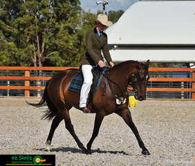 Second place in the Novice Hack Mare 5 Years and Over ne 15hh was Anna Elder and Kambo Christmas Acres on the second last day of the 2019 Australian Stock Horse Nationals Show
