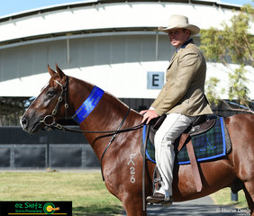 Indianas Destiny Dot Com won the Novice Hack Colt 2 Years and Under Class with Scott Heidke in the saddle at the 2019 Australian Stock Horse National Show.