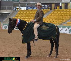 Barry Moore and Starwaltz Cool Justice provided Judge, Heath Andrews, with a beautiful workout in the Champion Working Stallion class to take home the Impressa sponsored rug