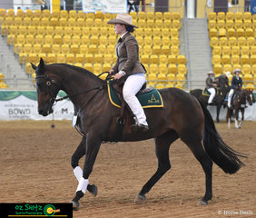 Sophie Howard and Todds Kassandra perform their workout before Judge, Heath Andrews, in the Senior Open Working Mare 5 Years and Over on the final day of competition at the 2019 ASH Nationals