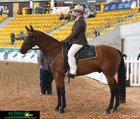 As the 2019 ASH Nationals comes to an end, Loretta Lawson and Rosebrook Oakley enter the arena to perform one of the final workouts for the event.