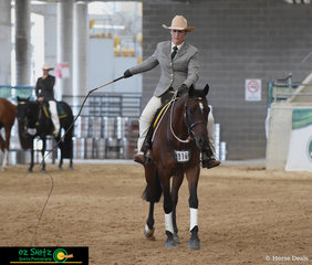 Champion 4 Year Old Junior Working Horse, Wungum Radar conclude their workout with a crack of the whip in the Supreme Working Horse of Show ridden by Maryanne Gough.
