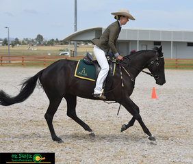 Effortless ride this morning by Georgia Gamble on board Kaypehaich Macatoo in the Junior Open Working Gelding 3 year old.