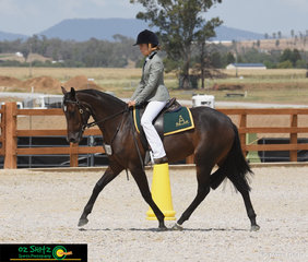 Riding her 4 Year Old Mare, Kallenia Scarlep was Lily Davies in the Open Working Horse Class on the last day of the 2019 Australian Stock Horse National Show.