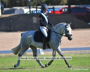 Macey Cooperfrom Mount Duneed rode Kingsfred Destiny in the Rider 13 & U15