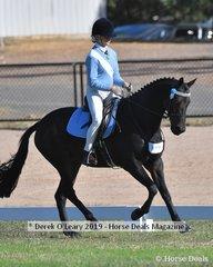 Emily Barton representing Hurstbrideg riding Jimba Sir Dazzler