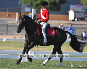 Caitlyn Griffiths rode GB Galahad representing Deniliquin in the Rider 13 & U15