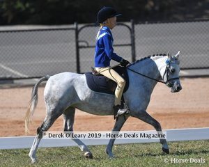 Indiana Dyson rode Carporra Lodge Fairy Floss representing Neanger Park in the Rider 11 to U13