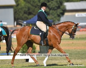 Oliva Burke rode Craft Show in the Rider 17 to Under 21 representing Bamawm
