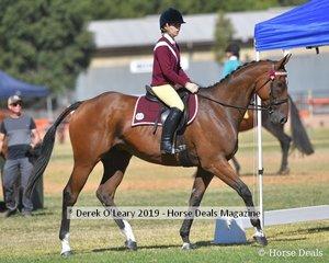 Zoe lloyd in the Rider 17yo to Under 21 riding Maori Prince representing Nyah