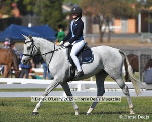 Matilda Bremner rode A Rizing Star in the Rider 17yo to Under 21 representing Mount Duneed