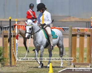 Tamsyn Harvey representing Riddells Creek rode Just A Wish in the Games for rider 9 and under 11