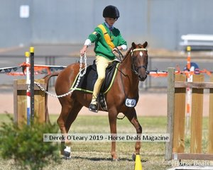 Leonara Turner from Drydale Leoplod rode Marshall Artz in the Games 13 and under 15yo