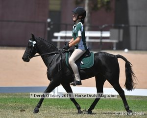 Danica Bradshaw rode MP Might and Power in the 11 and Under 13 yo Smartest On Parade representing Mildura Alcheringa