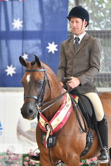 Darren and Melanie Welsh's, 'Bremervale bey Gabrielle' (Desperado/Bremervale Bey Bewitched) was declared Bronze Champion Arabian Show Hunter