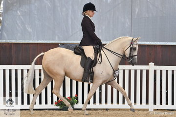 Sharon George's charming, 'Shazadi La Peregrina' (Manorvale County Road/Murraydale Park White Diamonds) is pictured during the Ridden Arabian Riding Pony Championship.