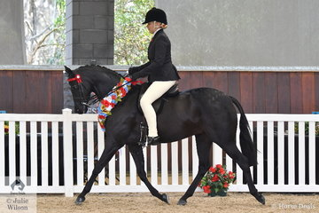 Lynda Hayes is pictured aboard Vicki Pisciotta's, 'Wideacre Black Diamond' (Royalwood Boy Soprano/Helden Park Petite) that won the Federation Bulk Haulage and Cherie Mills award for High Point Arabian Derivative Female Exhibit.