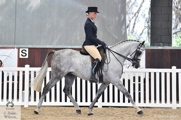 Megan Cheeseman rode the ReAlity Arabians and Future Farms nomination, 'Allegiant MI' (Allegiance MI/MI Angel) to take out the Ridden Arabian Gelding Silver Championship.