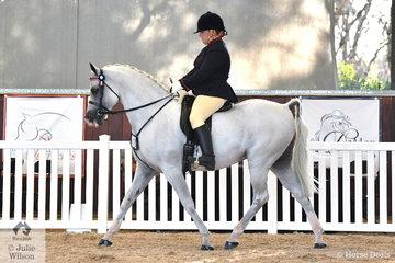 Lehan Britten from NSW rode her handsome, 'Fire Alert' (TS Al Malik/Fire Flame) to claim the Purebred Arabian Ridden Stallion Silver Championship.