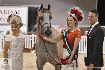 Nikki Fricy leading Brittany Jessup's, 'Parlance MI' claimed the Fashions On The Field Reserve Championship. She is pictured with judges L-R Lynda Hayes and Alan Preston.