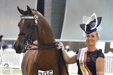 Melinda O'Connell, pictured with the South Serenity Arabians nomination, 'Mystica Abbas' was declared Fashions On The Field Over 40 Champion on the final night of the  2019 Australian Arabian National Championships.