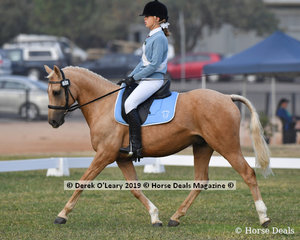 "Jamie Hildebrand rode ""Charles Brulee"" in the Grade 4 Dressage her team the Hursty High Flyers"