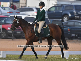 "Emily Robinson in the Grade 4 Dressage riding ""My Charming Zipper"" representing Mildura Alcheringa"